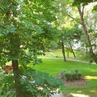 Anielewicza podwórko